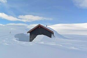 Snow, Snow, Snowhere